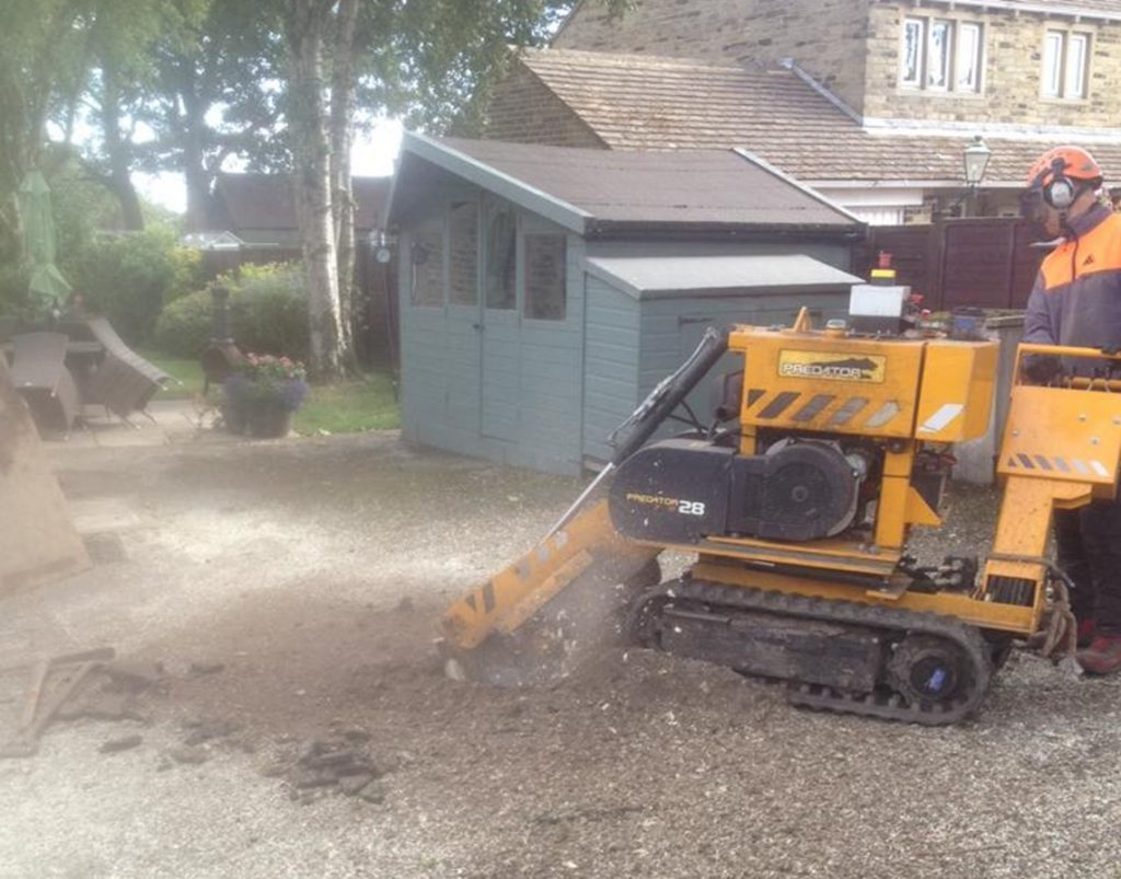 Birstall Tree Services Stump Grinding