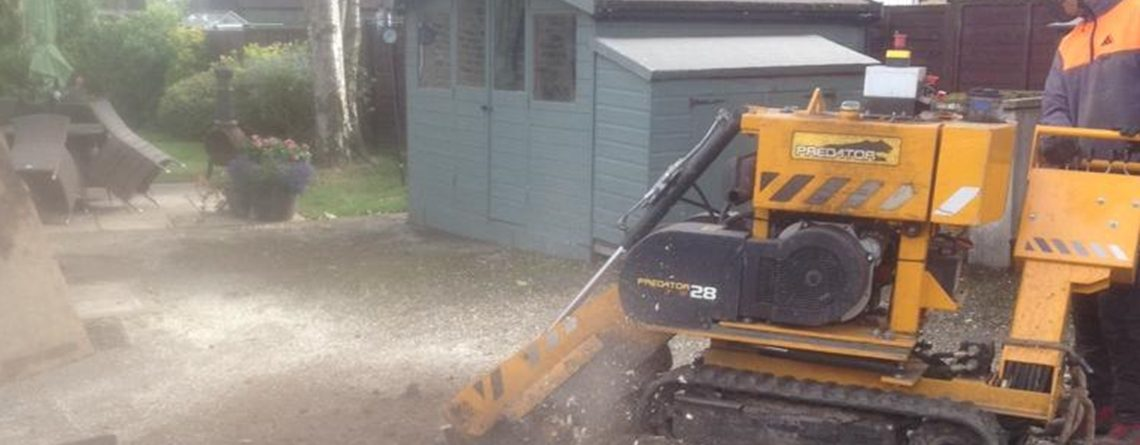 Local Birstall Tree Surgeon Offers Stump Grinding