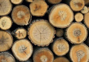 Birstall Tree Services Wood for sale