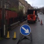 Conifer Removal Birstall Tree Services
