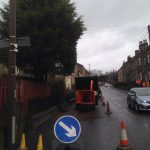 Conifer Removed Birstall Tree Services