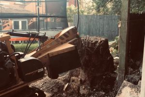 Birstall Tree Services - Stump Grinder