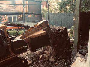 Birstall Tree Services - Stump Grinder